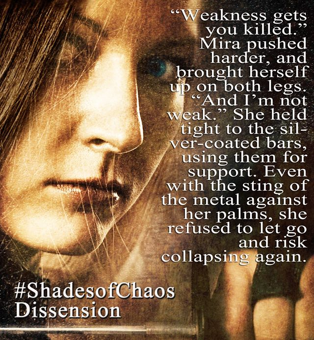 Dissension Teaser