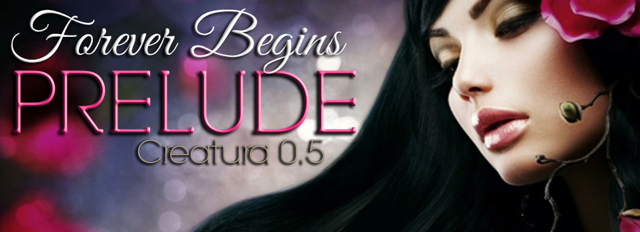 Prelude Banner